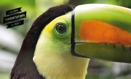 Mittelamerika Teil 1 – Von Belize bis Nicaragua